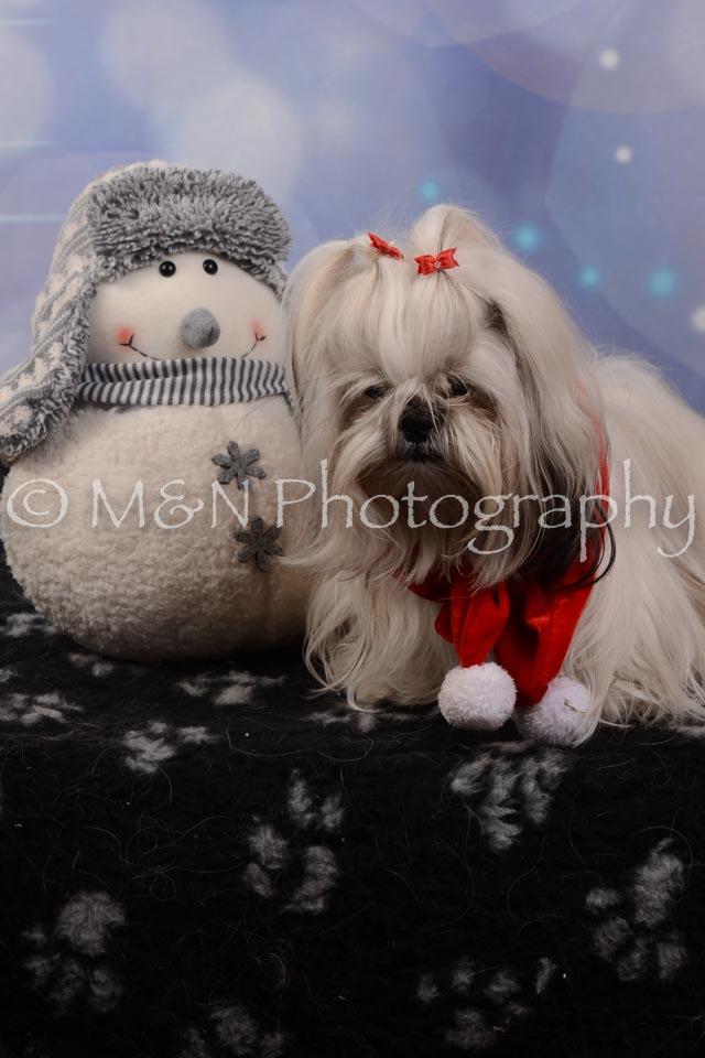 M&N Photography -DSC_7159