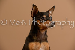 M&N Photography -_SNB0558