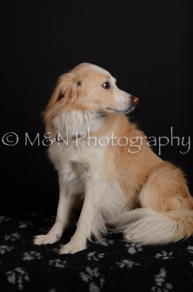 M&N Photography -DSC_5700