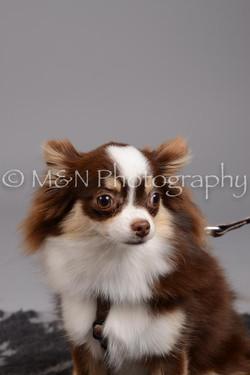 M&N Photography -DSC_2483