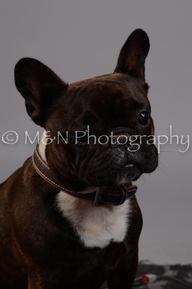 M&N Photography -DSC_2572