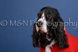 M&N Photography -DSC_5114