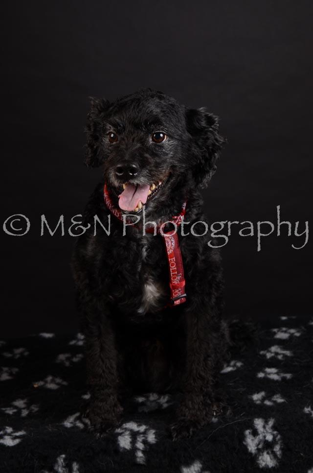 M&N Photography -DSC_5654