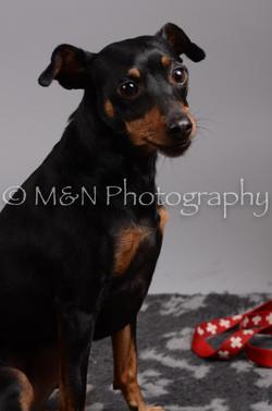 M&N Photography -DSC_2806