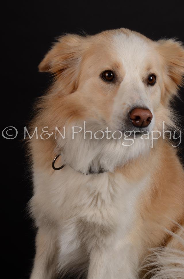 M&N Photography -DSC_5705