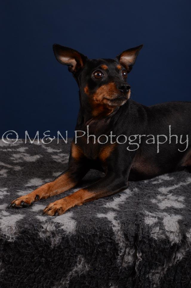 M&N Photography -DSC_3866