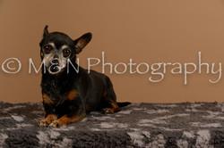 M&N Photography -_SNB0567
