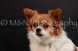 M&N Photography -DSC_5967
