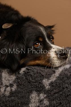 M&N Photography -_SNB0865