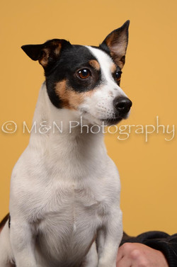 M&N Photography -DSC_4523