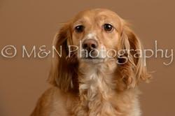 M&N Photography -_SNB0821