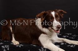 M&N Photography -DSC_5888