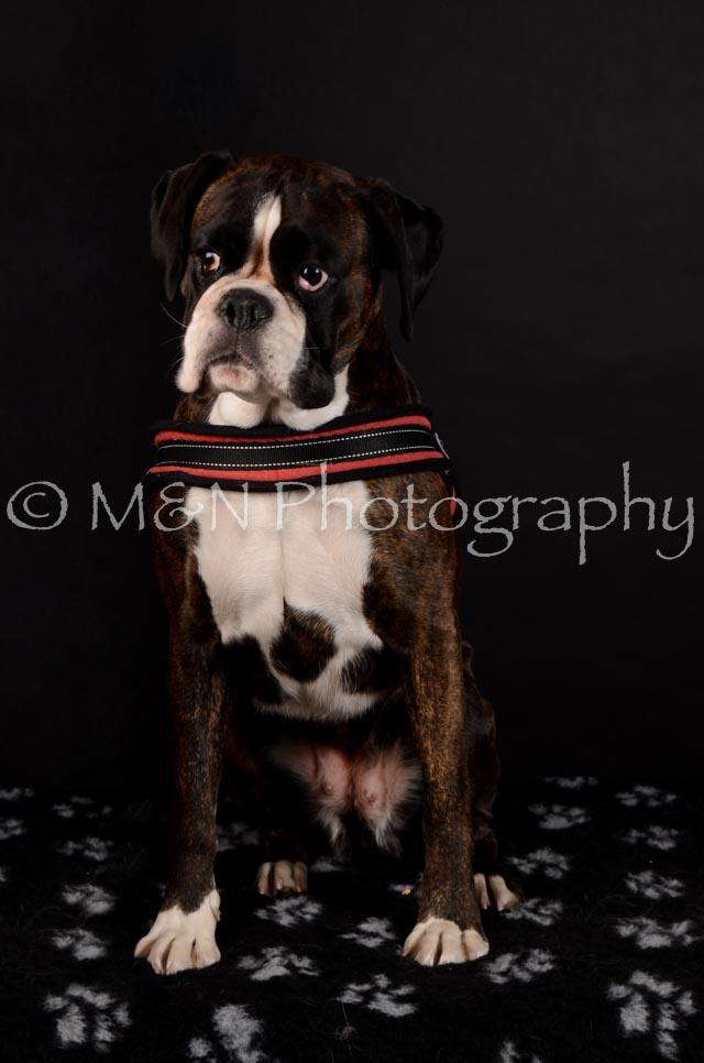 M&N Photography -DSC_5626