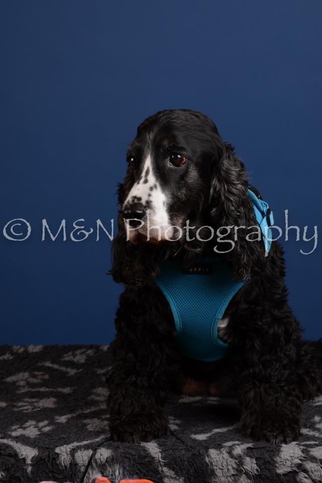 M&N Photography -DSC_5105