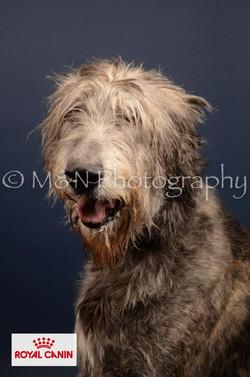M&N Photography -DSC_4438-2