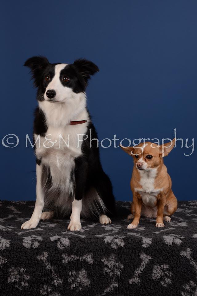 M&N Photography -DSC_5306