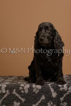 M&N Photography -_SNB0582