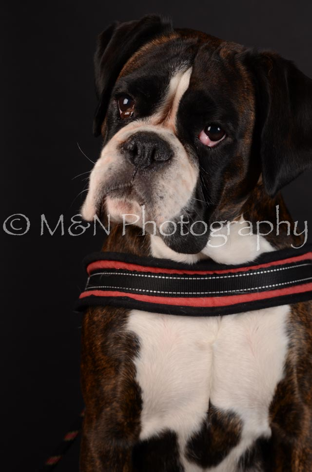 M&N Photography -DSC_5630