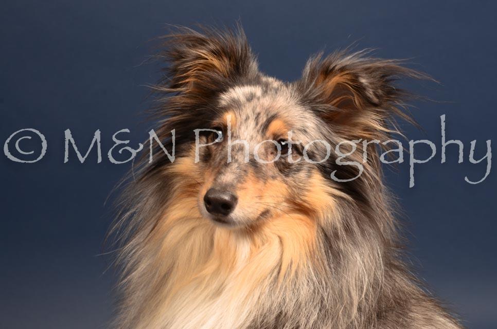 M&N Photography -DSC_4448