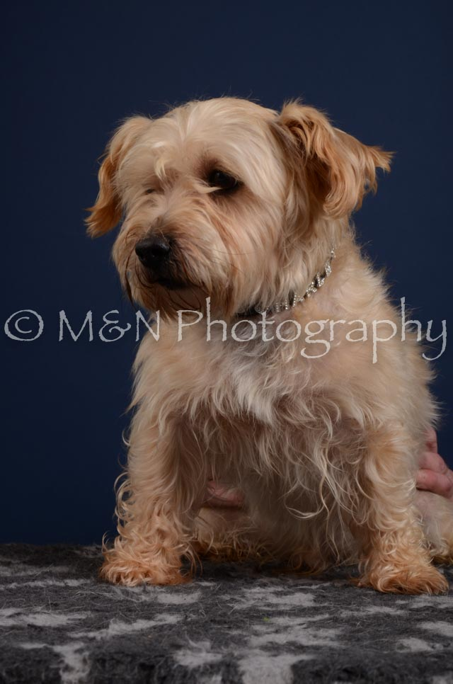 M&N Photography -DSC_3852