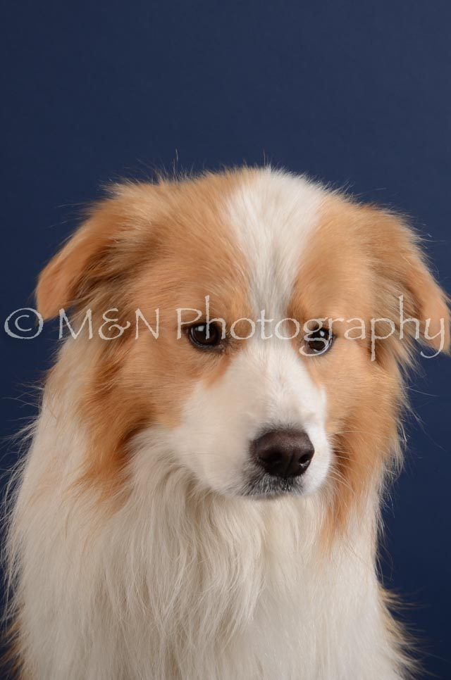 M&N Photography -DSC_3939