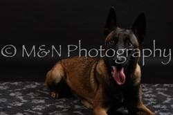 M&N Photography -DSC_2726