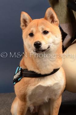 M&N Photography -DSC_4320