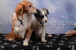 M&N Photography -DSC_6908