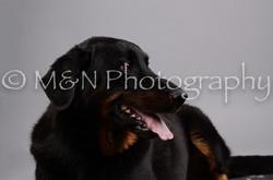 M&N Photography -DSC_2794