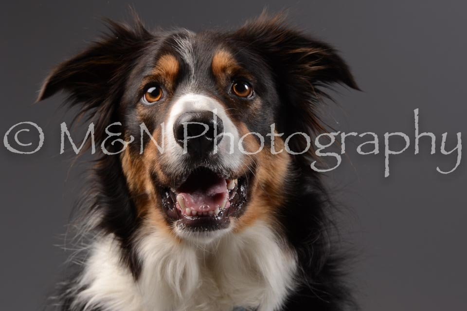 M&N Photography -DSC_2064