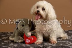 M&N Photography -_SNB0879