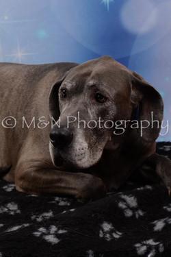 M&N Photography -DSC_6753