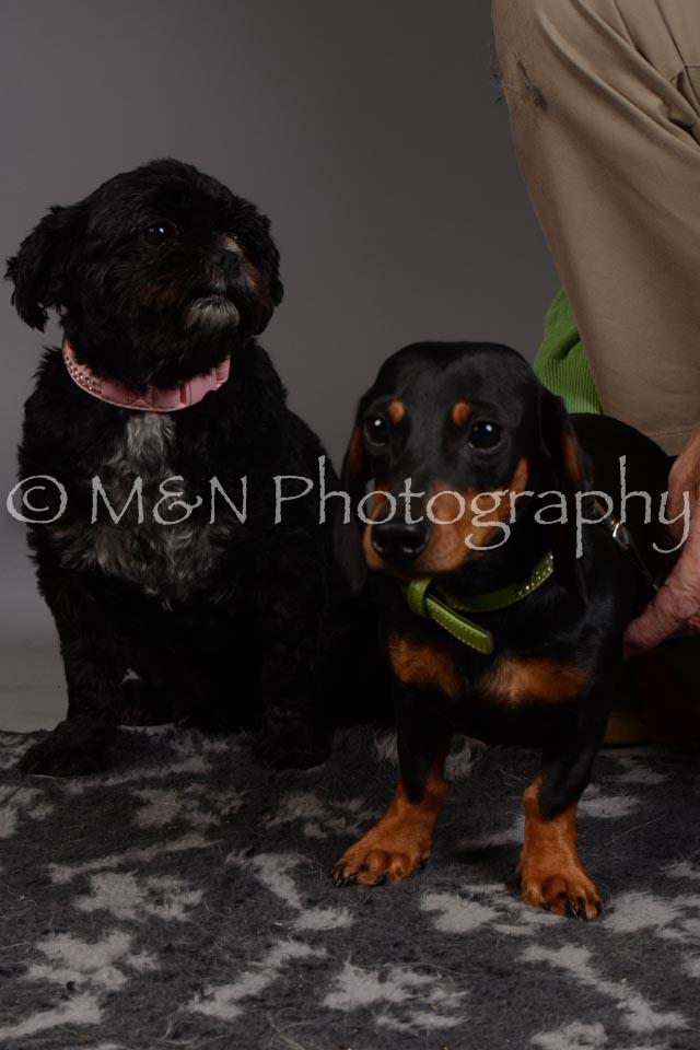 M&N Photography -DSC_2348