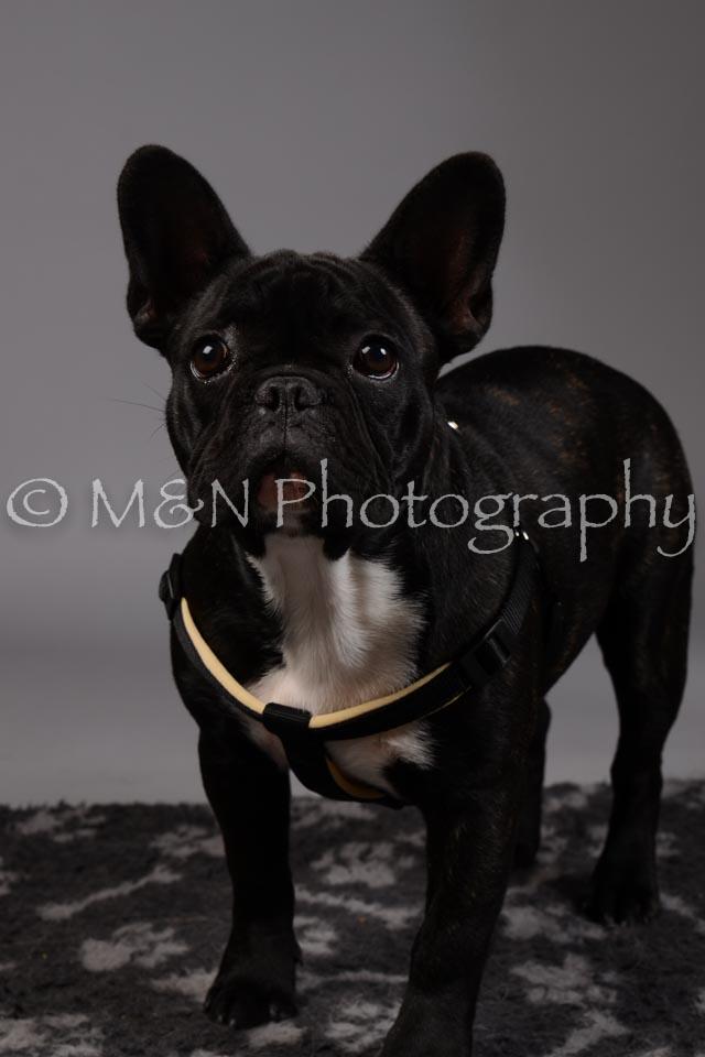M&N Photography -DSC_1730