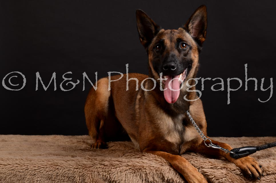 M&N Photography -DSC_5573