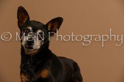 M&N Photography -_SNB0568