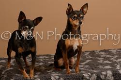 M&N Photography -_SNB0553