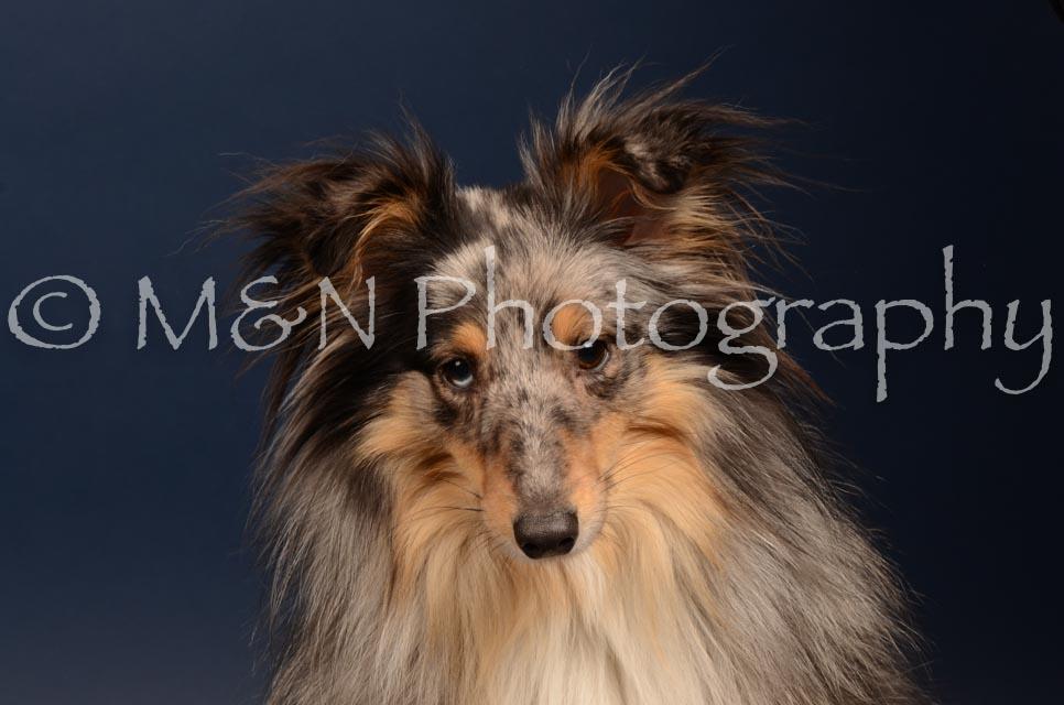 M&N Photography -DSC_4444