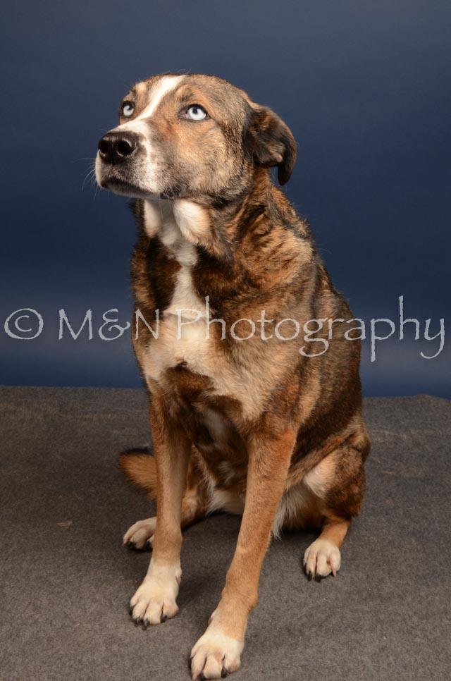 M&N Photography -DSC_4510