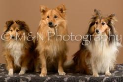 M&N Photography -_SNB0690
