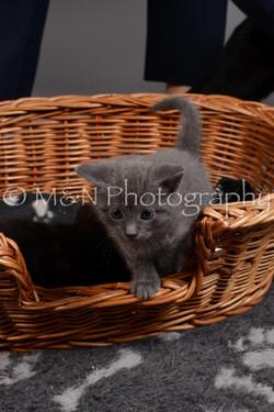 M&N Photography -DSC_2378