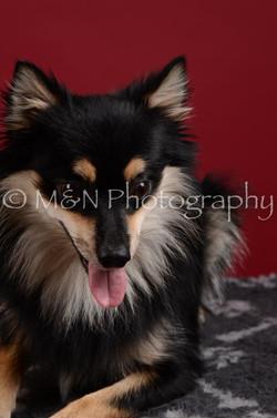 M&N Photography -DSC_3207