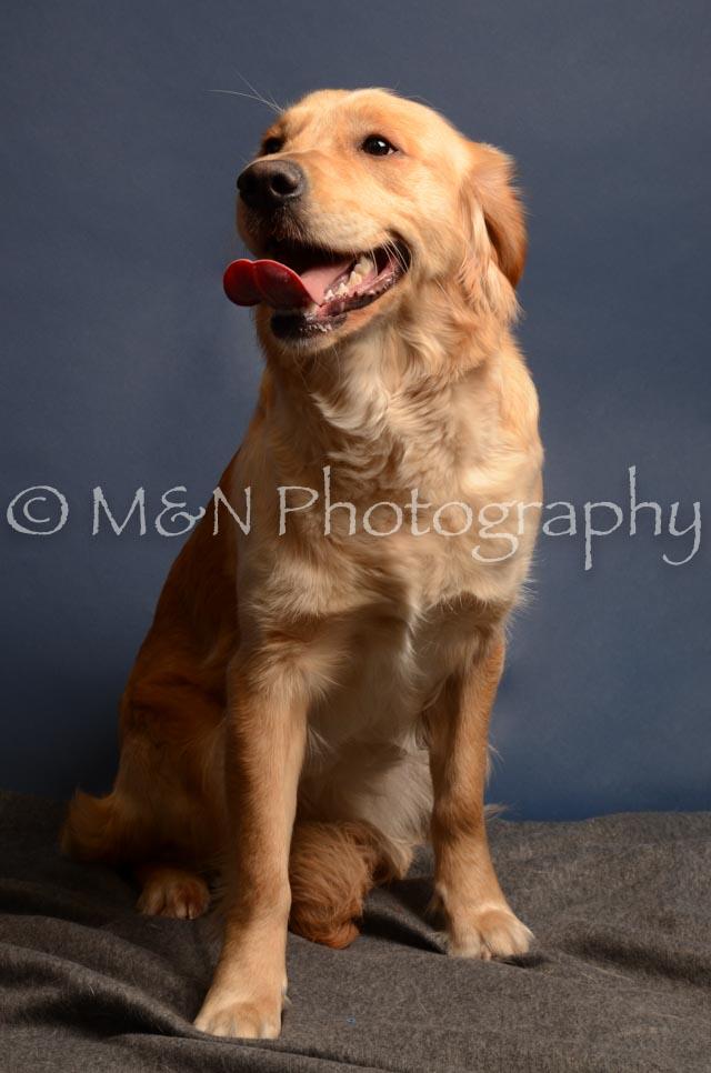 M&N Photography -DSC_4163