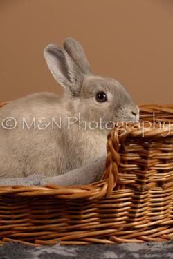 M&N Photography -_SNB0508