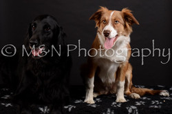 M&N Photography -DSC_5849