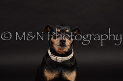 M&N Photography -DSC_9647