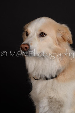 M&N Photography -DSC_5702