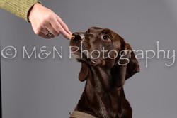 M&N Photography -DSC_2677