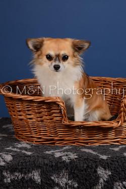 M&N Photography -DSC_4980