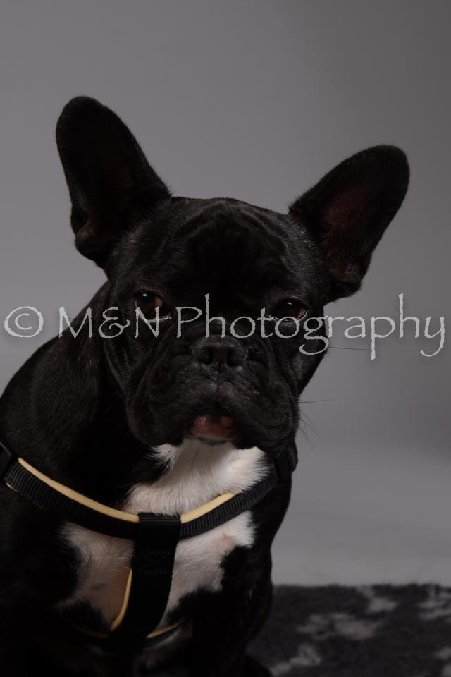 M&N Photography -DSC_1727